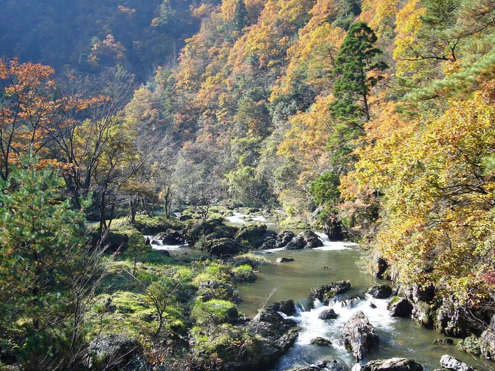 【荒俣峡(あらまたきょう)】石川県の紅葉情報