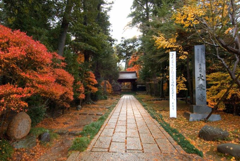 大乗寺総門(黒門)の紅葉