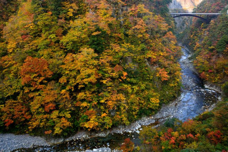 白山白川郷ホワイトロードの紅葉スポットである蛇谷大橋