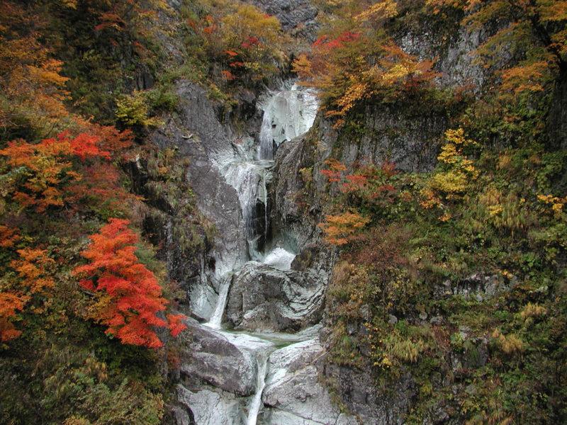 白山白川郷ホワイトロードの紅葉スポットであるかもしか滝