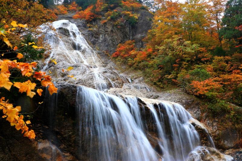 白山白川郷ホワイトロードの紅葉スポットである姥ケ滝(うばがたき)