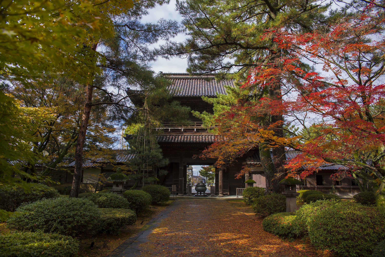 金沢市にある琴姫様の菩提寺「天徳院」の紅葉