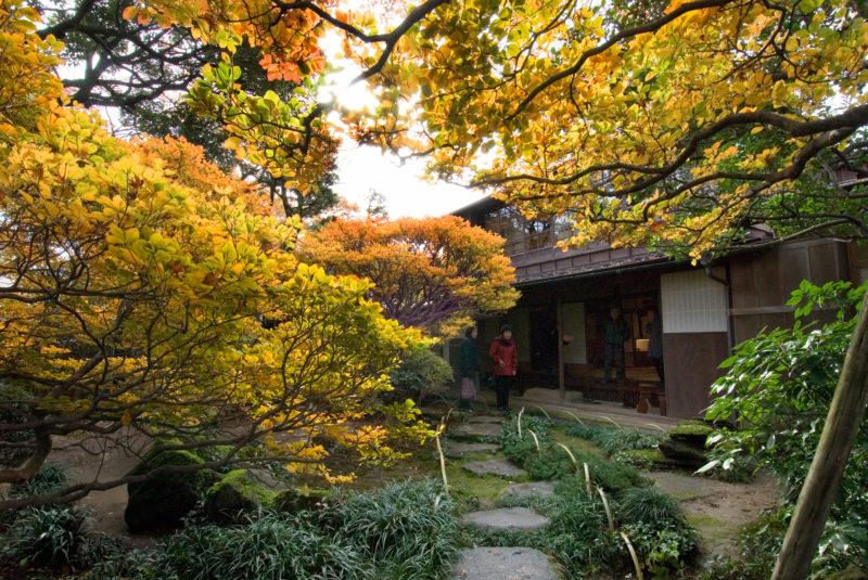 寺島蔵人邸(てらしまくらんどてい)の紅葉情景