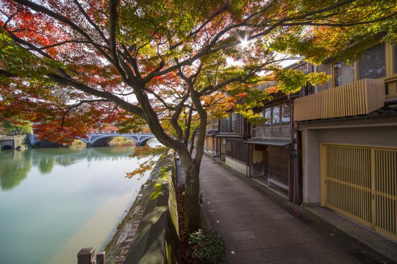 浅野川大橋近くの「主計町(かずえまち)」の紅葉