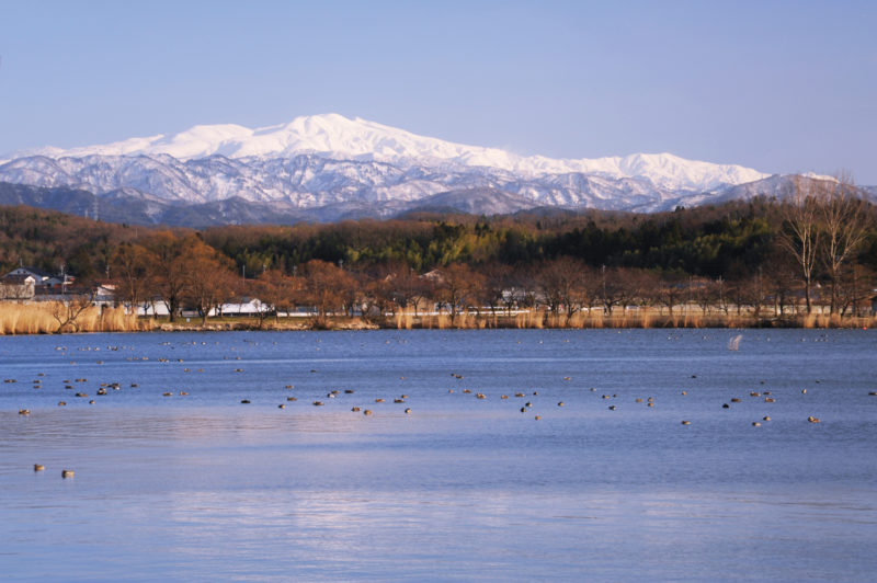 小松市の「木場潟公園(きばがたこうえん)」
