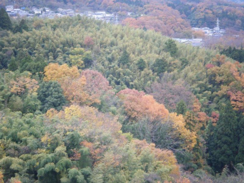 卯辰山「見晴らし台」から見る山々