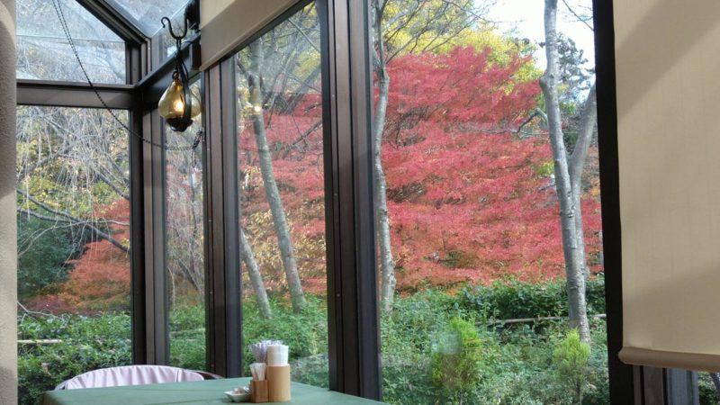 【金沢/六角堂】卯辰山の美味しいステーキハウス